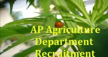 Andhra Pradesh Agriculture Department Recruitment 2017