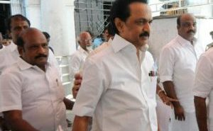 MK Stalin has chosen as DMK's first working president