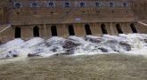 Flood alerts issued in 12 Tamil Nadu districts