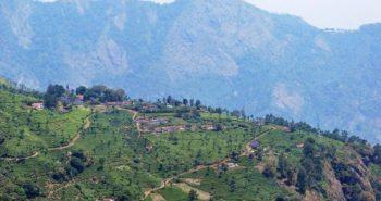 New Measures in Nilgiris