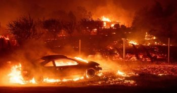 Forest fire in united states; Five killed