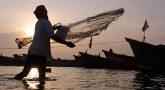 World fisheries day – November 21