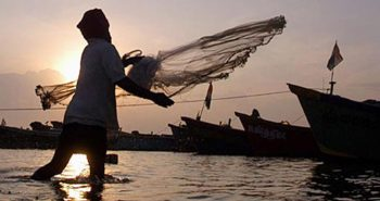 World fisheries day – November 21