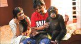Jiiva's Gorilla release in Jan