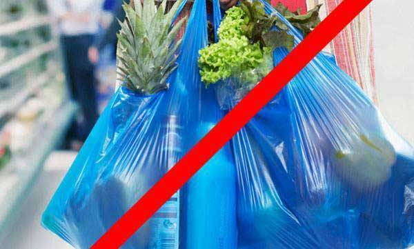 CM annnounced plastic ban in puducherry
