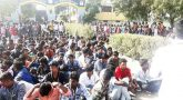 Many students start protest against Pollachi issue